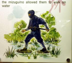 ninja_mizugumo1