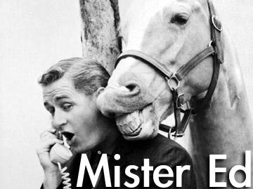 mister-edjpg 360270