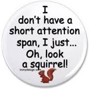 I like squirrels.